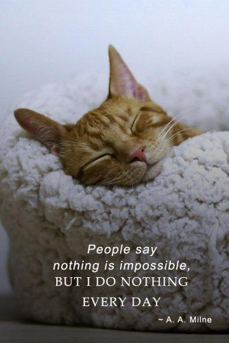 People say nothing is impossible, but I do nothing every day. – A. A. Milne #inspirationalquotes #lifequotes #truequotes