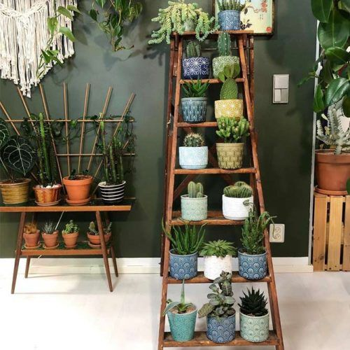 Ladder Wood Plant Stand #bigplantstand #woodladder