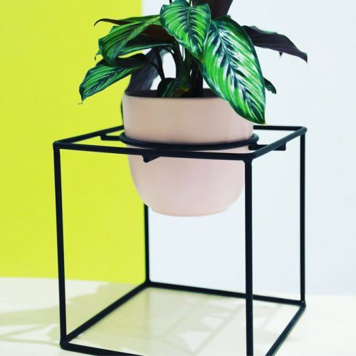 Cubic Metal Plant Stand #geometricplantstand
