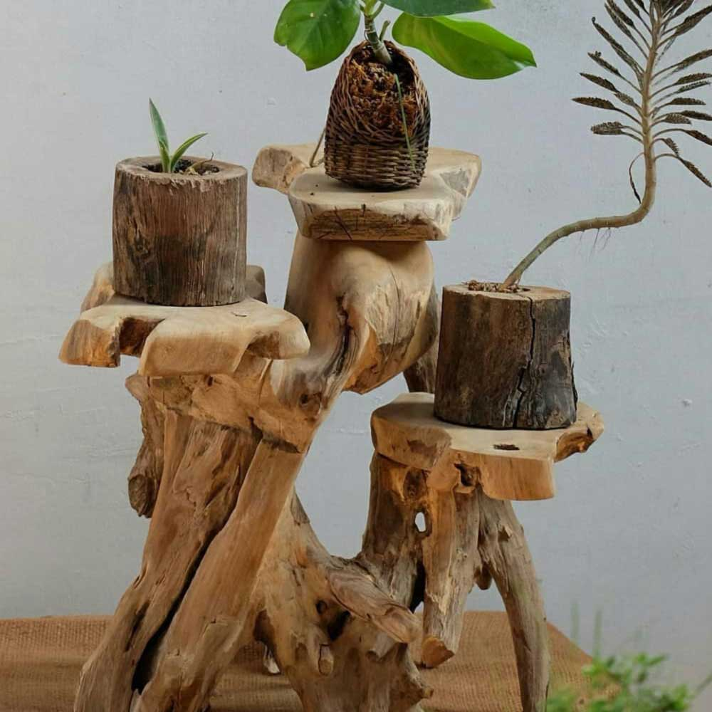 How do you put a plant in a room? #woodenplant
