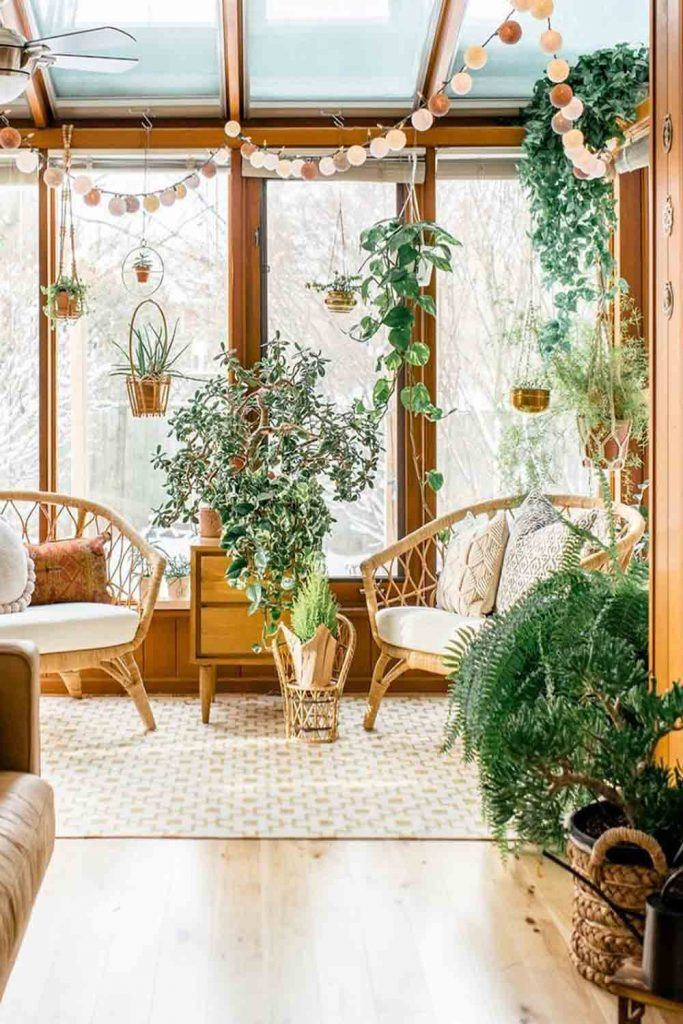 Can I Keep Plants In Sunroom? #plants