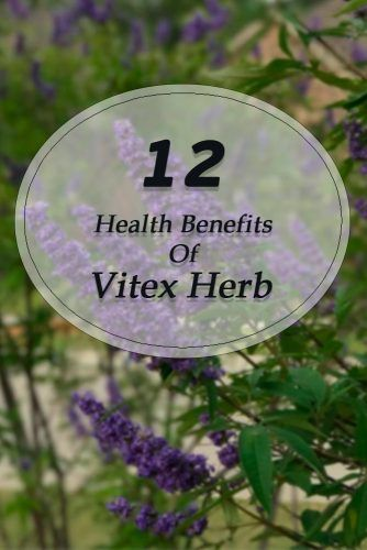 Vitex Health Benefits #herbal #healthylife