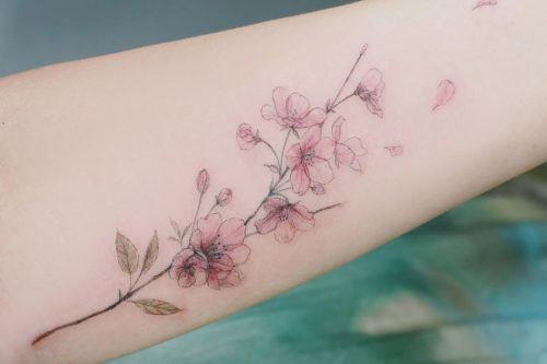 Tender Selection Of Cherry Blossom Tattoo For Your Inspiration