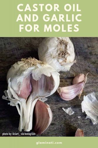 Castor Oil And Garlic For Moles #garlicbenefits
