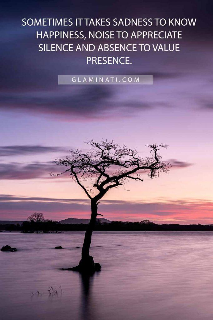 Sometimes it takes sadness to know happiness, noise to appreciate silence and absence to value presence. #sadness #happiness