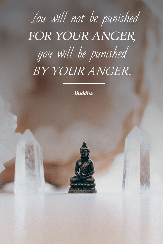 You will not be punished for your anger, you will be punished by your anger #love #qoutes #life