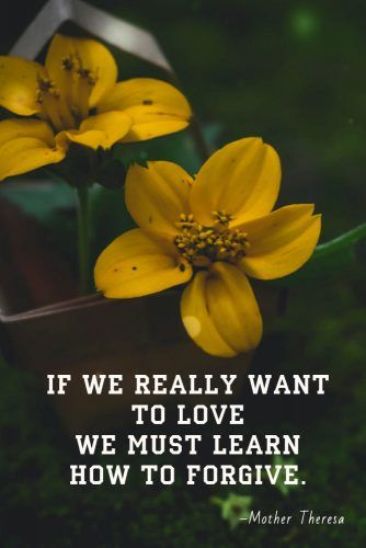 If we really want to love we must learn how to forgive #quotes #relationship