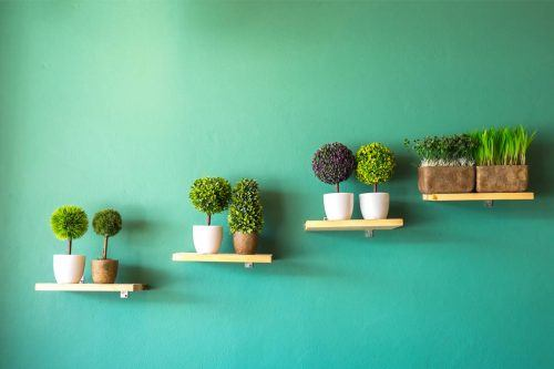 Incredible Wall Planter Pots For Devoted Plant Fans