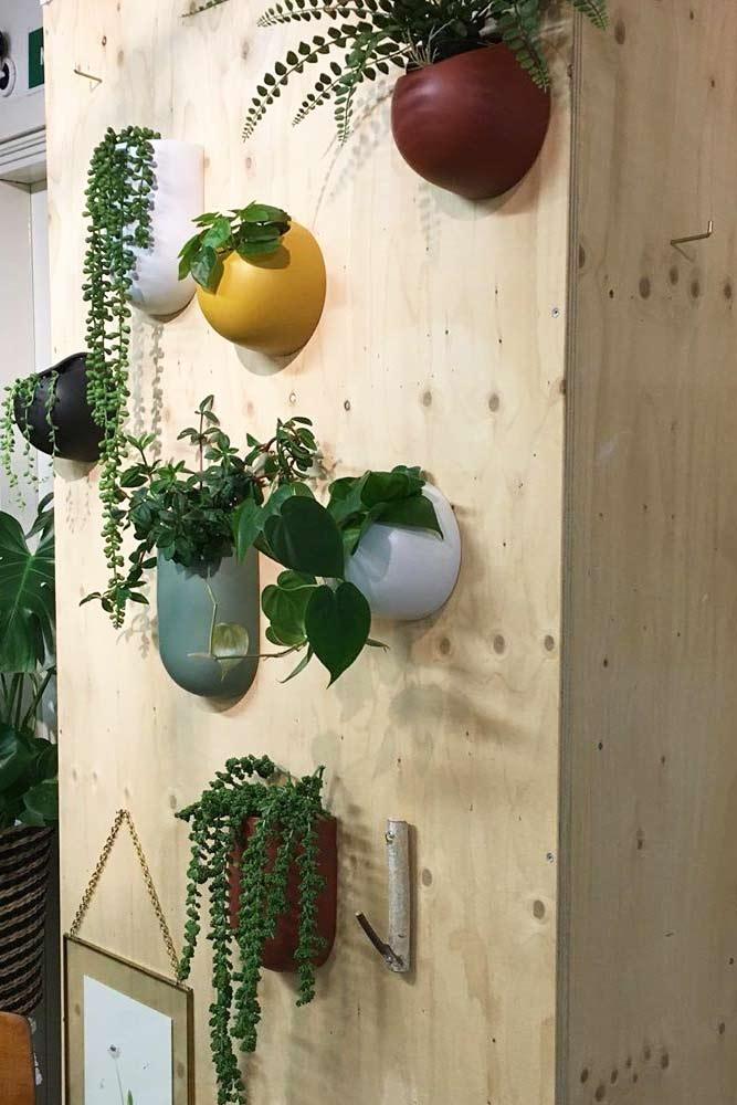 Colorful Wall Mounted Plants Pots #wallmountedpots