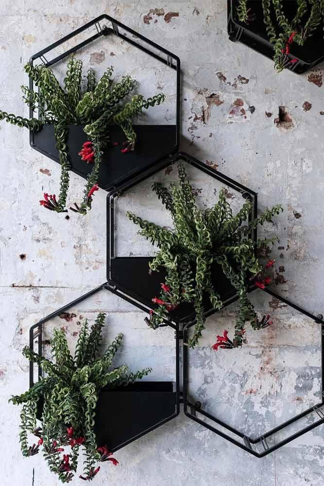 Hexagon Metallic Wall Pots Designs #metallicpots