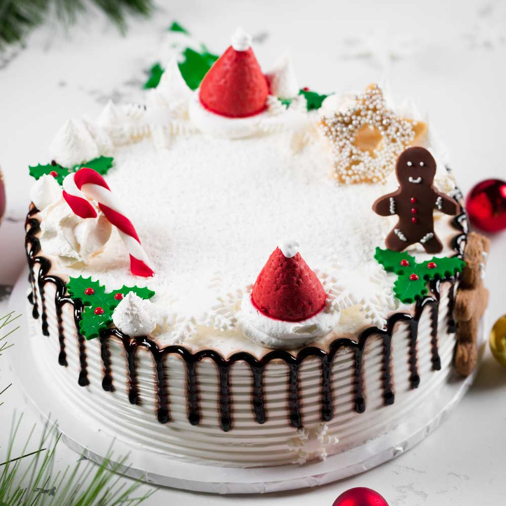 Christmas Cake Decor Idea