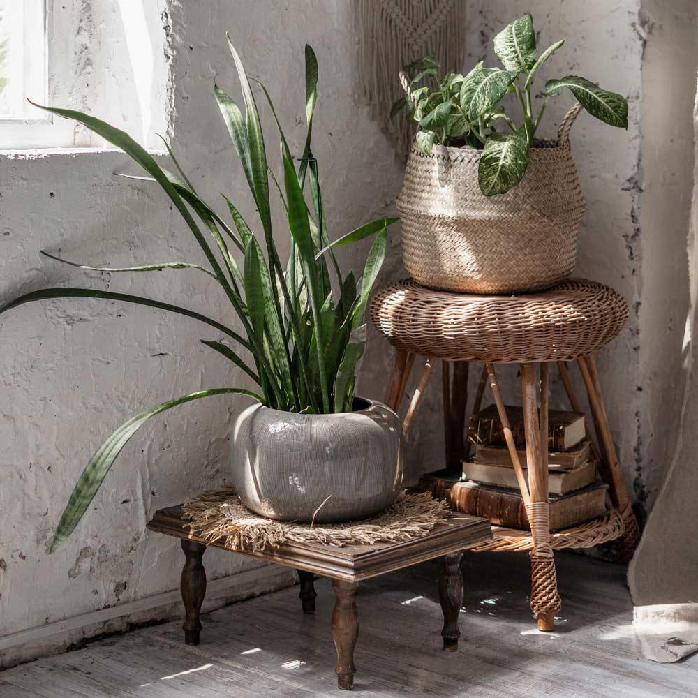 Vintage Rustic Plant Stands