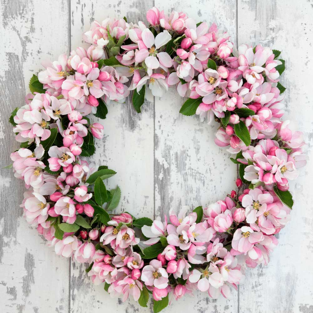 Spring Wreath with Pink Flowers