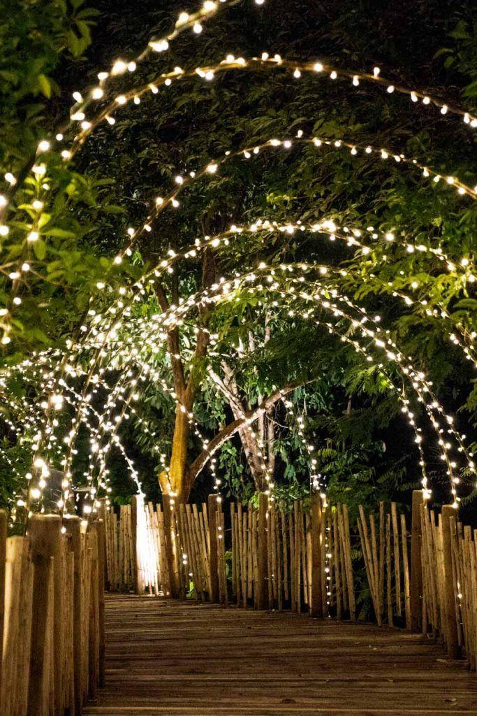 Led Lights Tonnel