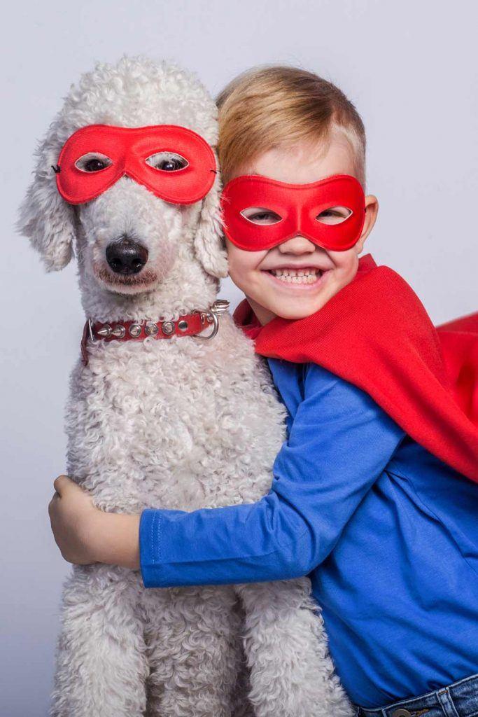 Superman Costume Idea with Pet